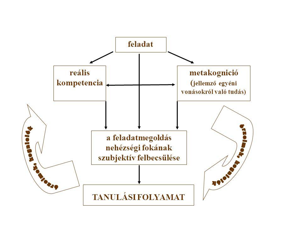 feladat reális kompetencia metakognició ( jellemző egyéni vonásokról való tudás) a feladatmegoldás nehézségi fokának szubjektív felbecsülése TANULÁSI FOLYAMAT