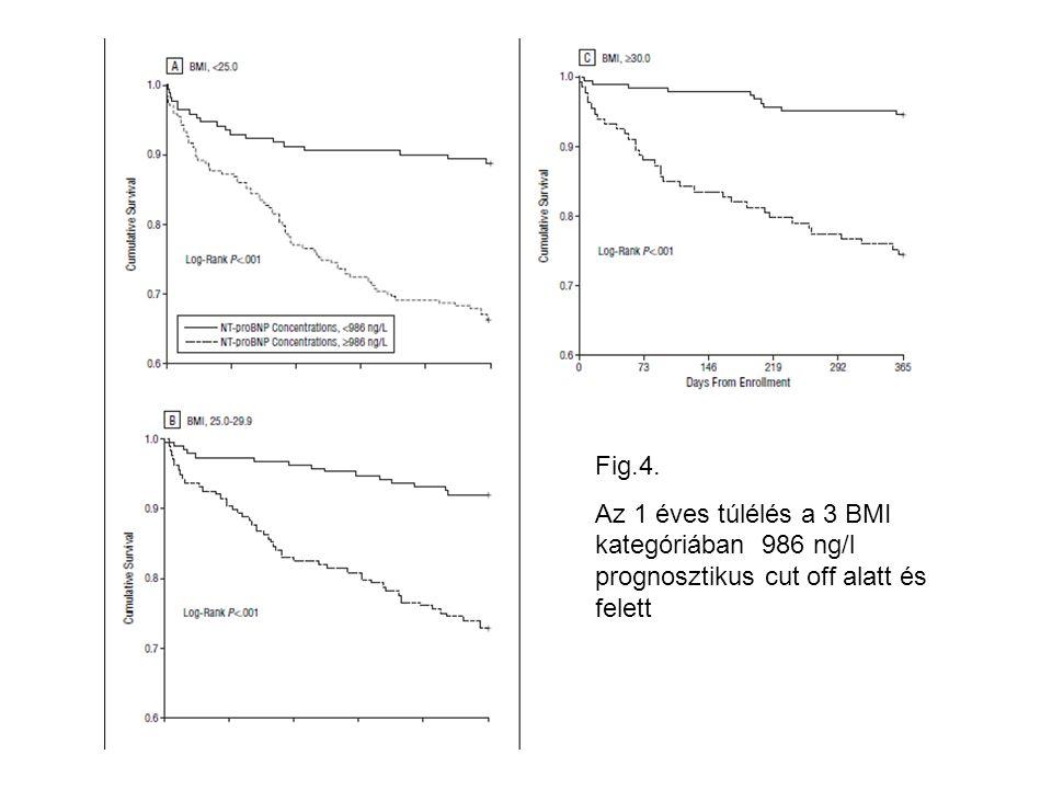 Fig.4. Az 1 éves túlélés a 3 BMI kategóriában 986 ng/l prognosztikus cut off alatt és felett