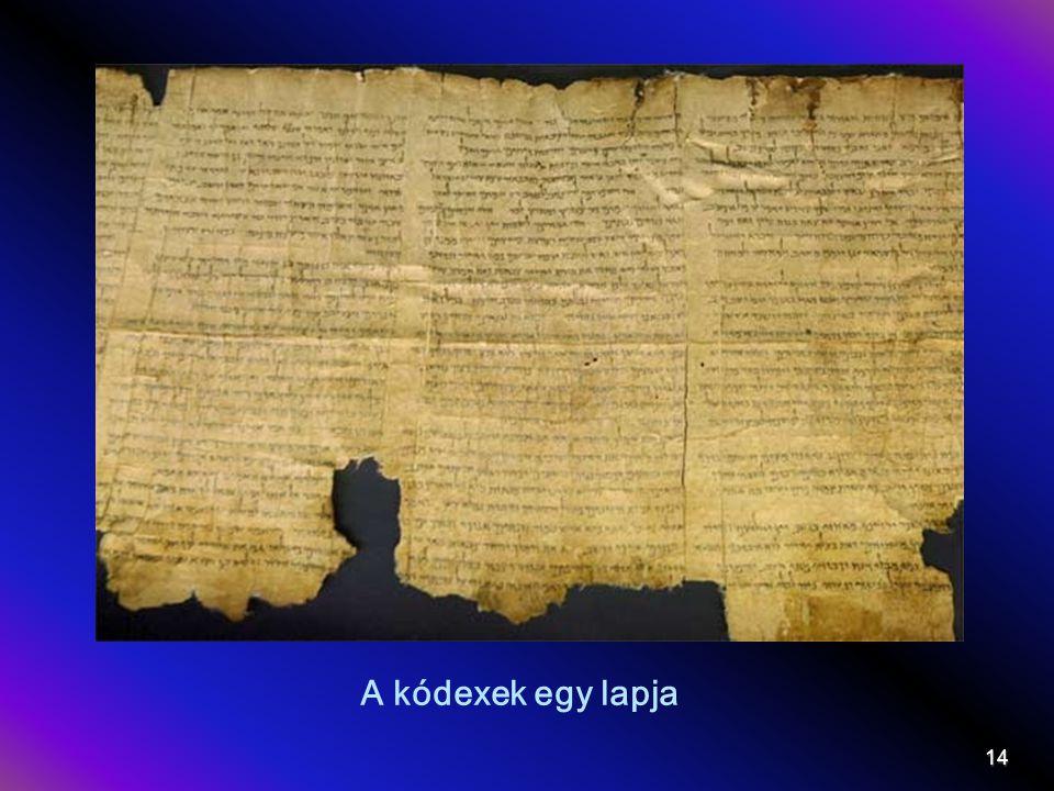 A kódexek egy lapja 14
