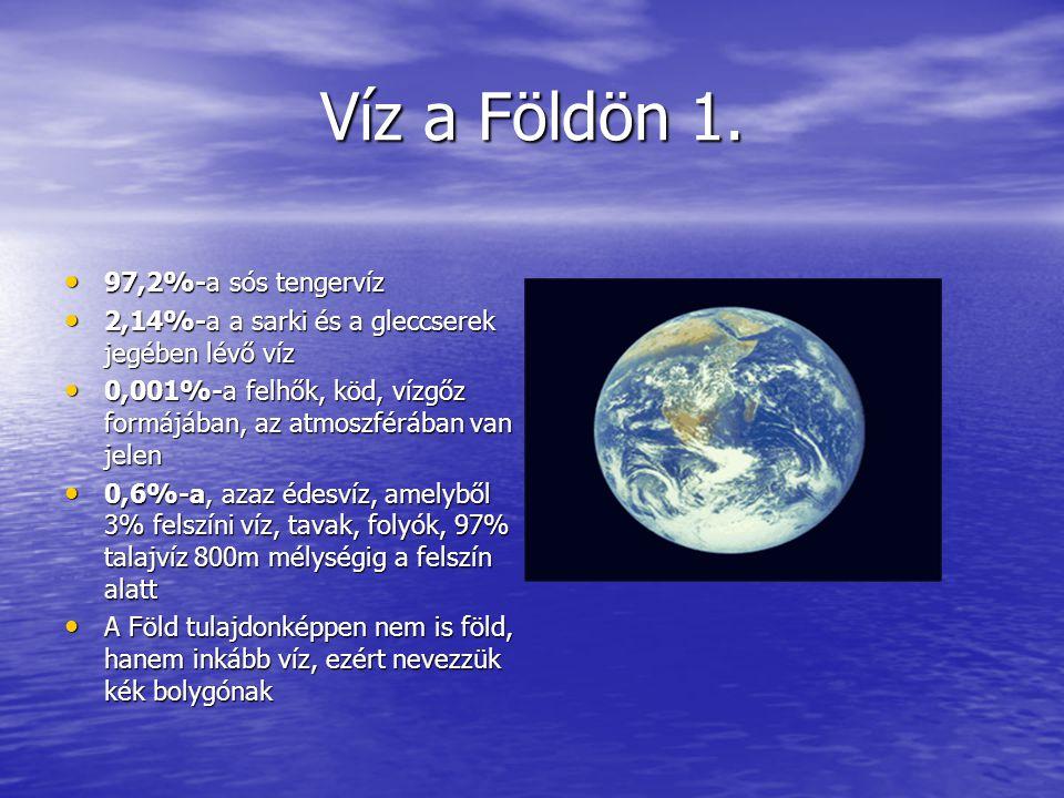 Víz a Földön 2.Az élőlények: ember, állat és növény is tartalmaznak vizet.