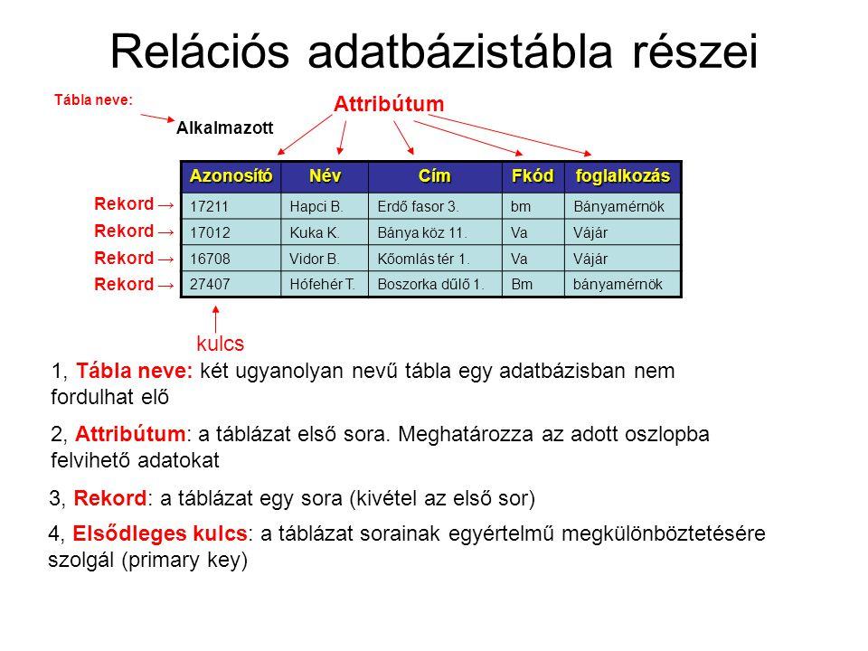 Relációs adatbázistábla részei AzonosítóNévCímFkódfoglalkozás 17211Hapci B.Erdő fasor 3.bmBányamérnök 17012Kuka K.Bánya köz 11.VaVájár 16708Vidor B.Kőomlás tér 1.VaVájár 27407Hófehér T.Boszorka dűlő 1.Bmbányamérnök Alkalmazott 2, Attribútum: a táblázat első sora.