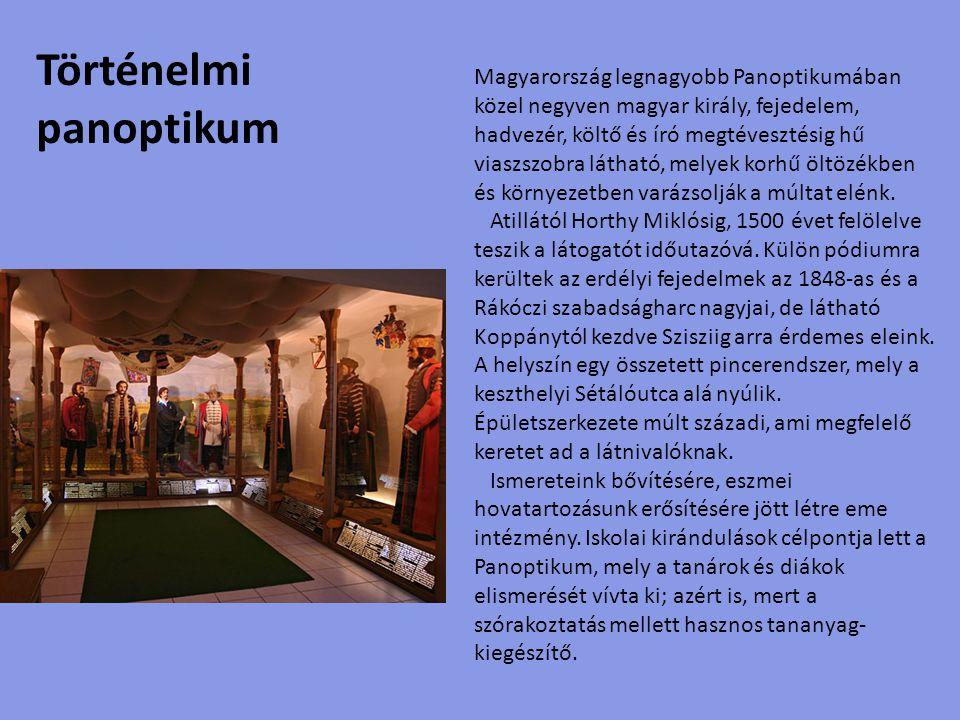 Kínzó Múzeum, avagy Horrorárium A Kínzómúzeum bemutatja a kínzási, kivégzési módszereket a középkortól a legújabb korig, a távol-kelettöl a tengerentúlig.