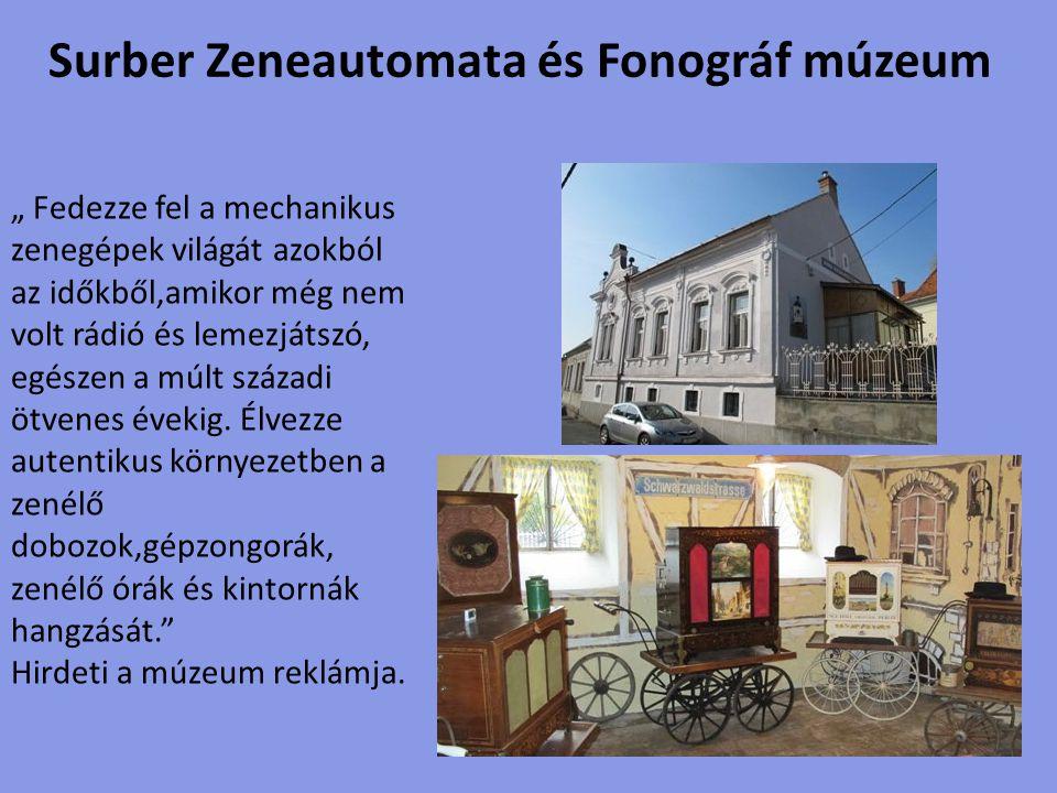 A múzeum a Festetics-kastély közvetlen közelében található.