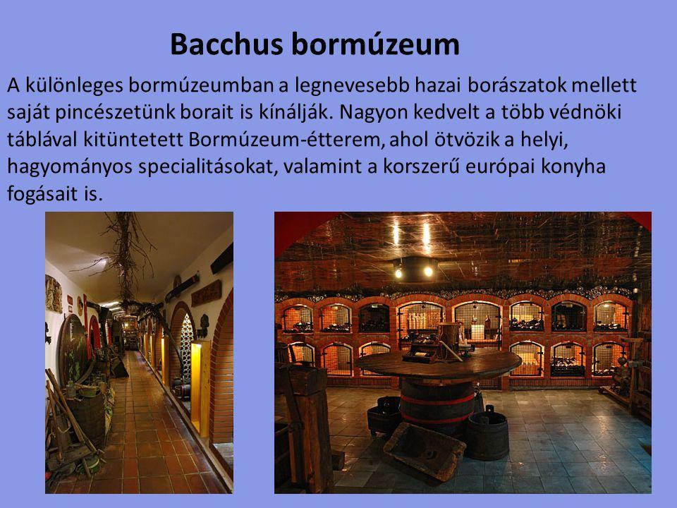 Az oktatóközpontként és múzeumként működő Balatoni Borok Házának 2005 óta a Festetics kastély 16.