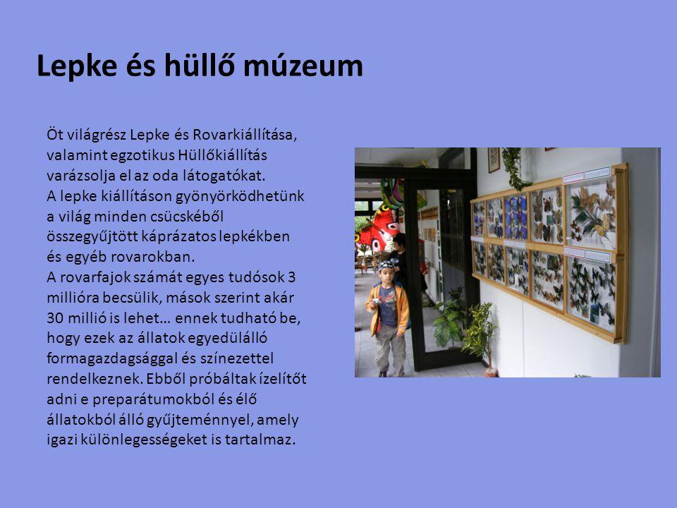 Kályha múzeum Szalay Imre fazekasműhelyében kézműves technológiával készült élethű makettek segítségével ismerhetők meg az egykori Dunántúli Szemeskályhákal.