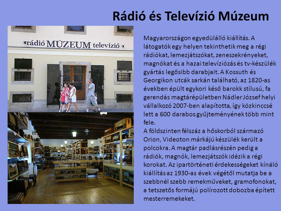 Lepke és hüllő múzeum Öt világrész Lepke és Rovarkiállítása, valamint egzotikus Hüllőkiállítás varázsolja el az oda látogatókat.