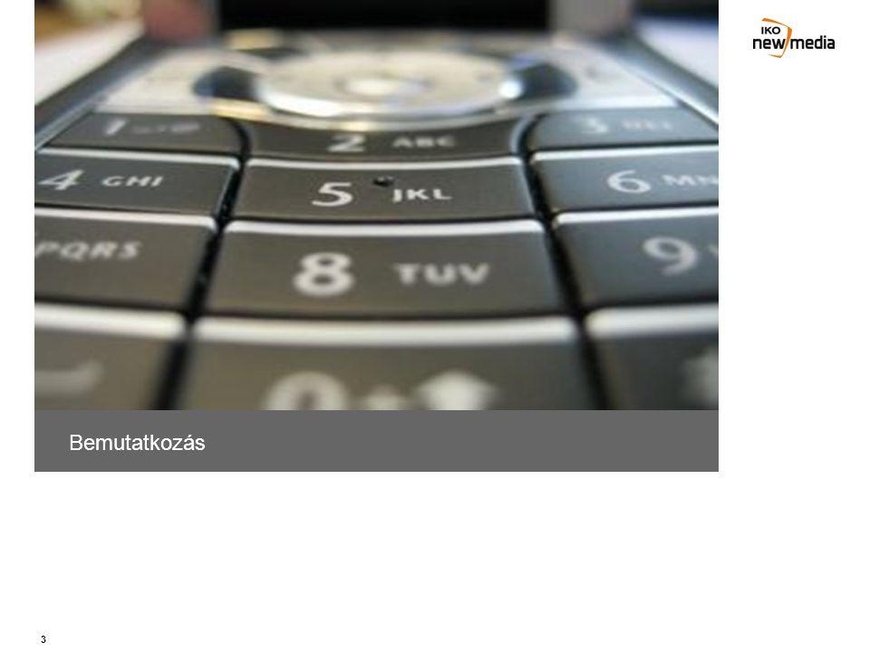 54 Adatbázis Adatbázis kezelés és BI –Adatbázis építés, kezelés –User telefonszámok regisztrálása –Ügyféligény szerinti riportok készítése, átadása –Beérkező üzenetek kezelése, elemzése, ellenőrzése –Felhasználók aktivitásának on-line ellenőrzése –Nick nevek regisztrálása (chat, társkereső alkalmazások) –User adatok (név, cím, mail) bekérése, feldolgozása