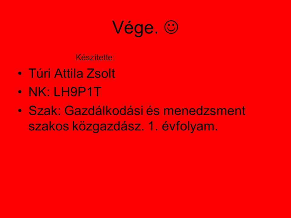 Vége. Készítette: Túri Attila Zsolt NK: LH9P1T Szak: Gazdálkodási és menedzsment szakos közgazdász.