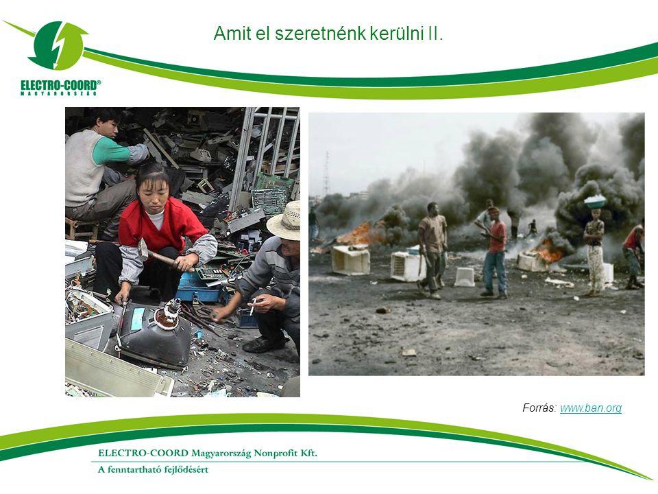 Amit el szeretnénk kerülni II. Forrás: www.ban.orgwww.ban.org