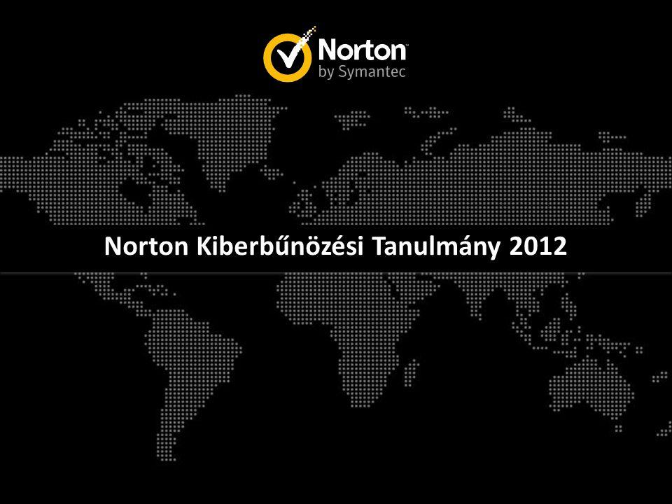 Norton Kiberbűnözési Tanulmány 2012