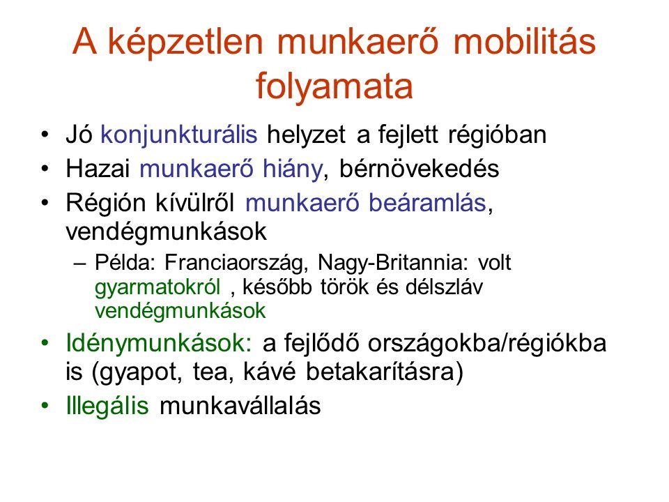 A képzetlen munkaerő mobilitás folyamata Jó konjunkturális helyzet a fejlett régióban Hazai munkaerő hiány, bérnövekedés Régión kívülről munkaerő beáramlás, vendégmunkások –Példa: Franciaország, Nagy-Britannia: volt gyarmatokról, később török és délszláv vendégmunkások Idénymunkások: a fejlődő országokba/régiókba is (gyapot, tea, kávé betakarításra) Illegális munkavállalás