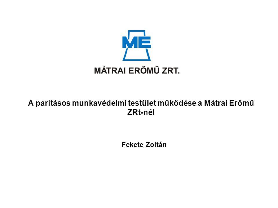 A paritásos munkavédelmi testület működése a Mátrai Erőmű ZRt-nél Fekete Zoltán