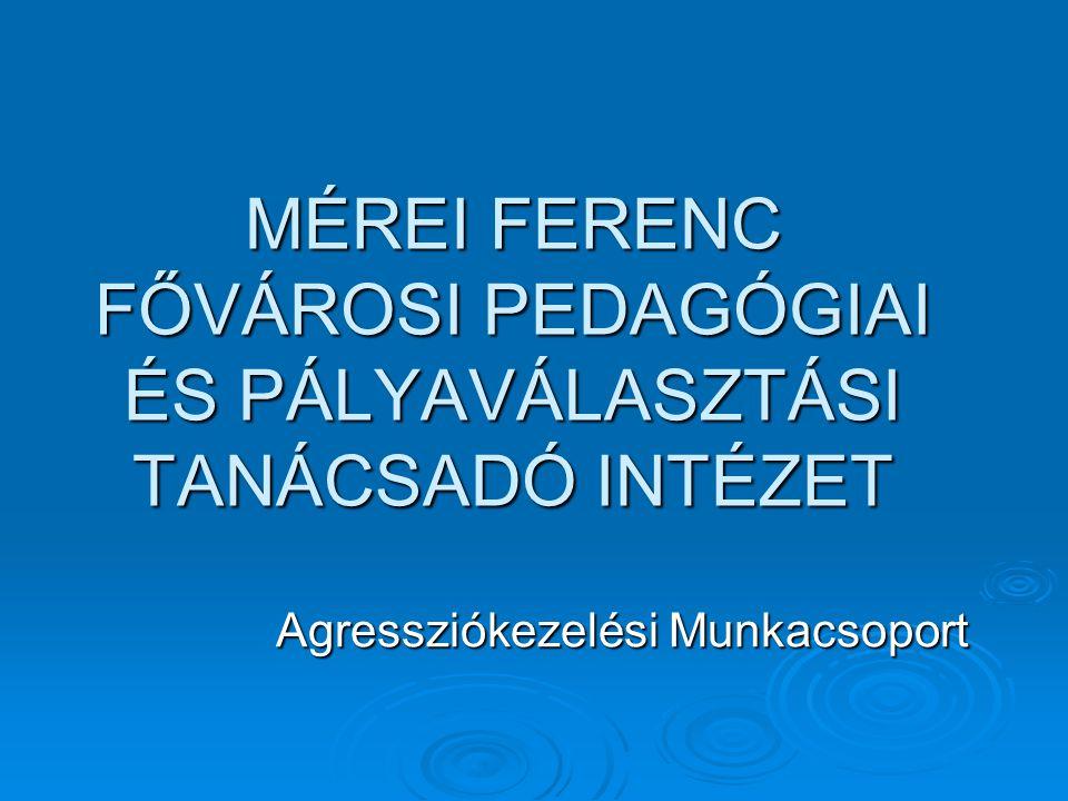 MFFPPTI CIVIL SZERVEZETEK az iskolai agresszió kezelésében III.