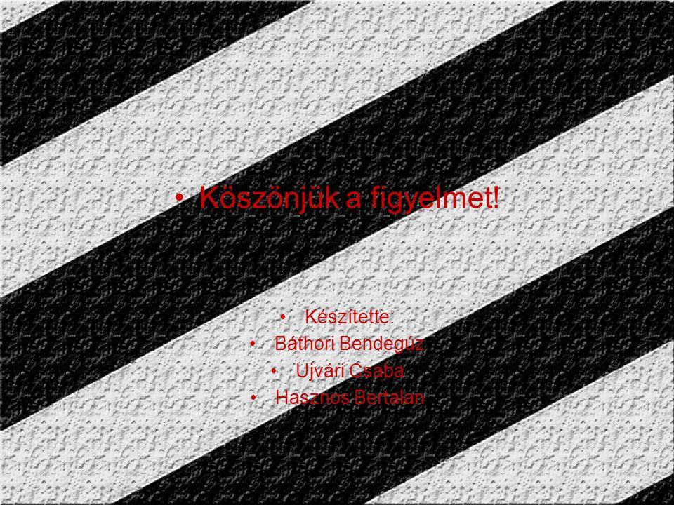 Köszönjük a figyelmet! Készítette: Báthori Bendegúz Ujvári Csaba Hasznos Bertalan