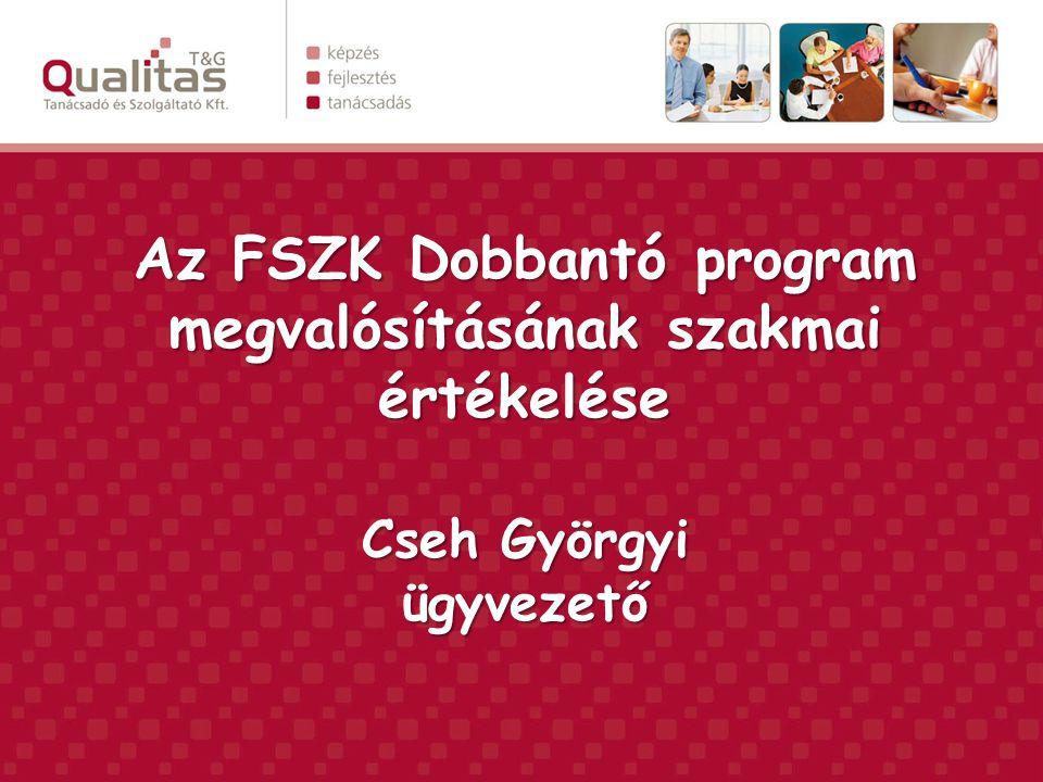 Az FSZK Dobbantó program megvalósításának szakmai értékelése Cseh Györgyi ügyvezető