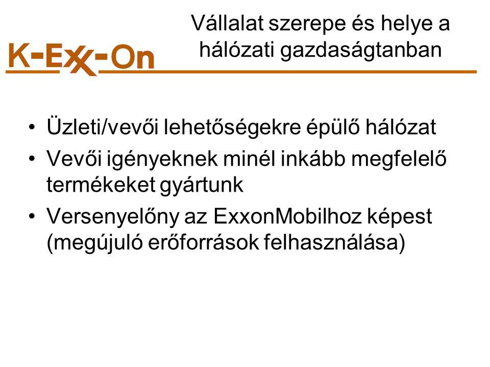 Vállalat szerepe és helye a hálózati gazdaságtanban Üzleti/vevői lehetőségekre épülő hálózat Vevői igényeknek minél inkább megfelelő termékeket gyártunk Versenyelőny az ExxonMobilhoz képest (megújuló erőforrások felhasználása)