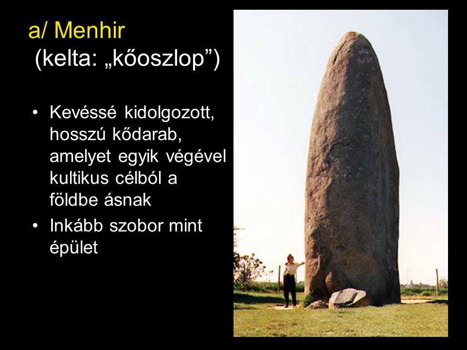 """a/ Menhir (kelta: """"kőoszlop ) Kevéssé kidolgozott, hosszú kődarab, amelyet egyik végével kultikus célból a földbe ásnak Inkább szobor mint épület"""
