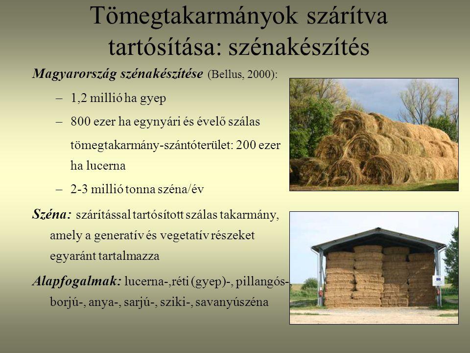 Magyarország szénakészítése (Bellus, 2000): –1,2 millió ha gyep –800 ezer ha egynyári és évelő szálas tömegtakarmány-szántóterület: 200 ezer ha lucern