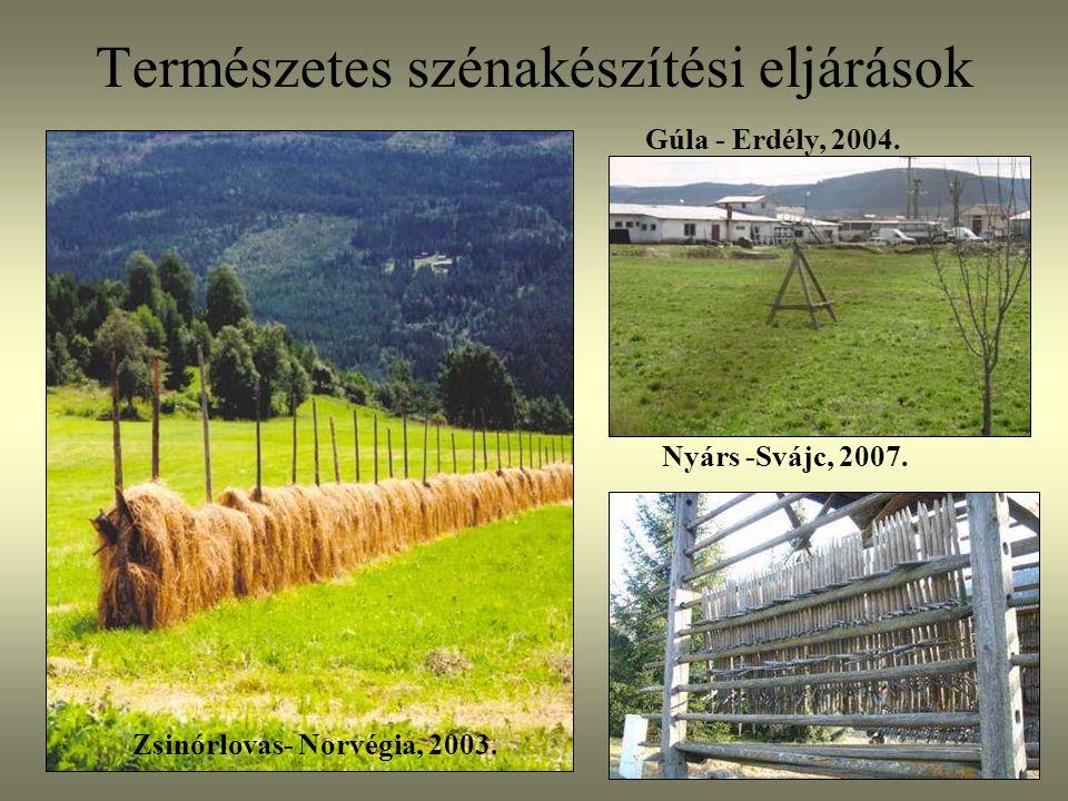 Természetes szénakészítési eljárások Zsinórlovas- Norvégia, 2003. Gúla - Erdély, 2004. Nyárs -Svájc, 2007.