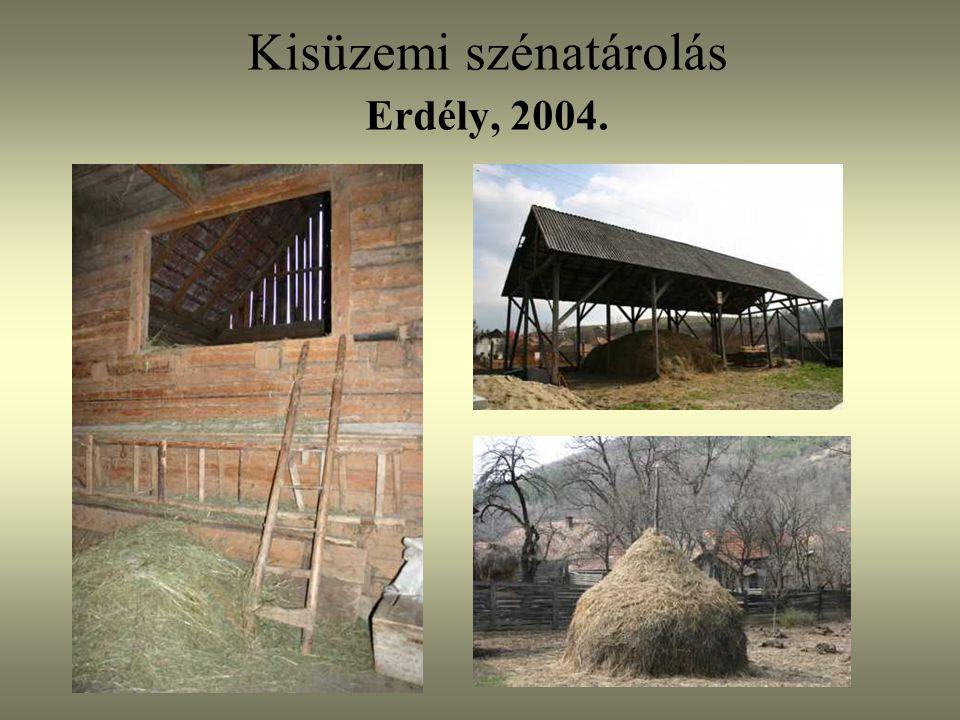 Kisüzemi szénatárolás Erdély, 2004.