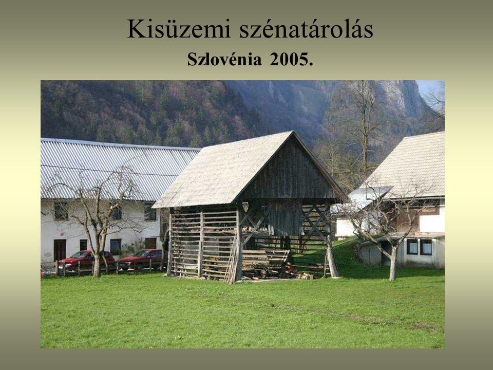 Kisüzemi szénatárolás Szlovénia 2005.
