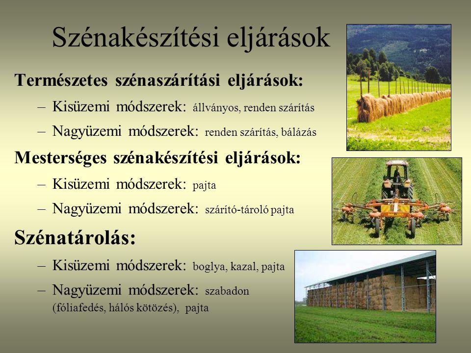 Természetes szénakészítési eljárások Zsinórlovas- Norvégia, 2003.