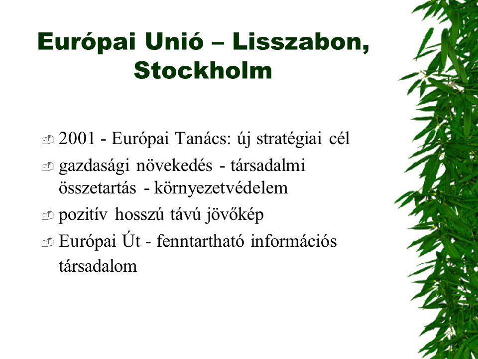 Európai Unió – Lisszabon, Stockholm  2001 - Európai Tanács: új stratégiai cél  gazdasági növekedés - társadalmi összetartás - környezetvédelem  poz