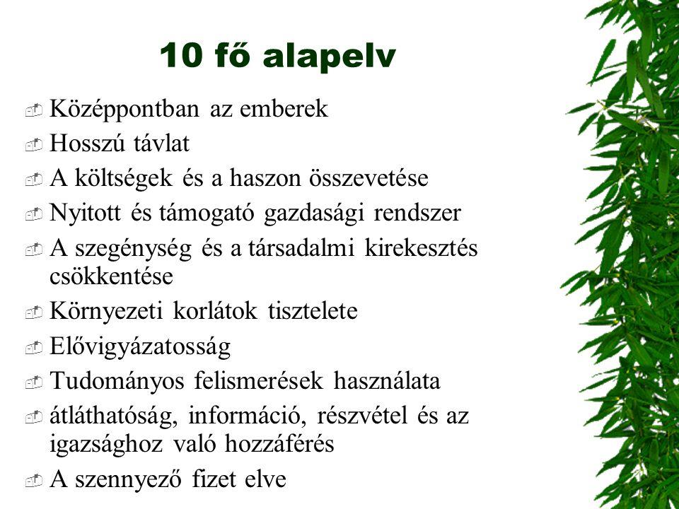 10 fő alapelv  Középpontban az emberek  Hosszú távlat  A költségek és a haszon összevetése  Nyitott és támogató gazdasági rendszer  A szegénység