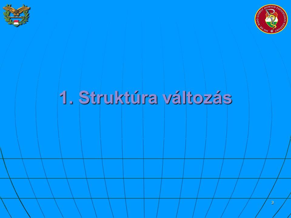 4 Struktúra változás 2007.07.01.