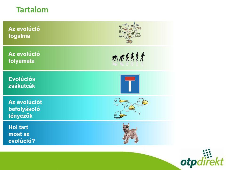 Az evolúció fogalma Az evolúció folyamata Evolúciós zsákutcák Az evolúciót befolyásoló tényezők Hol tart most az evolúció.