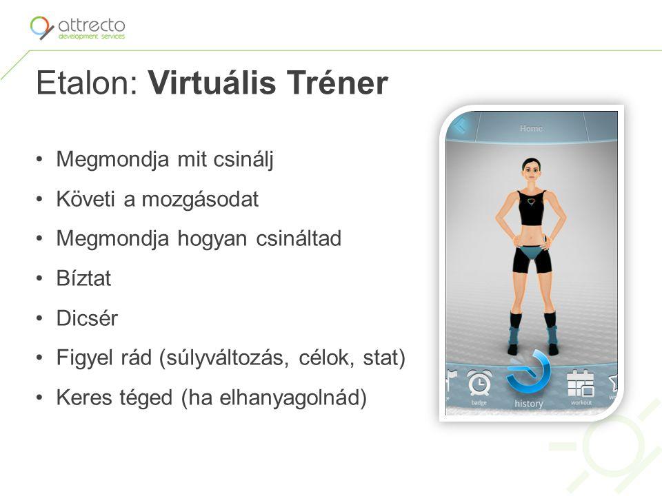 Etalon: Virtuális Tréner Megmondja mit csinálj Követi a mozgásodat Megmondja hogyan csináltad Bíztat Dicsér Figyel rád (súlyváltozás, célok, stat) Ker