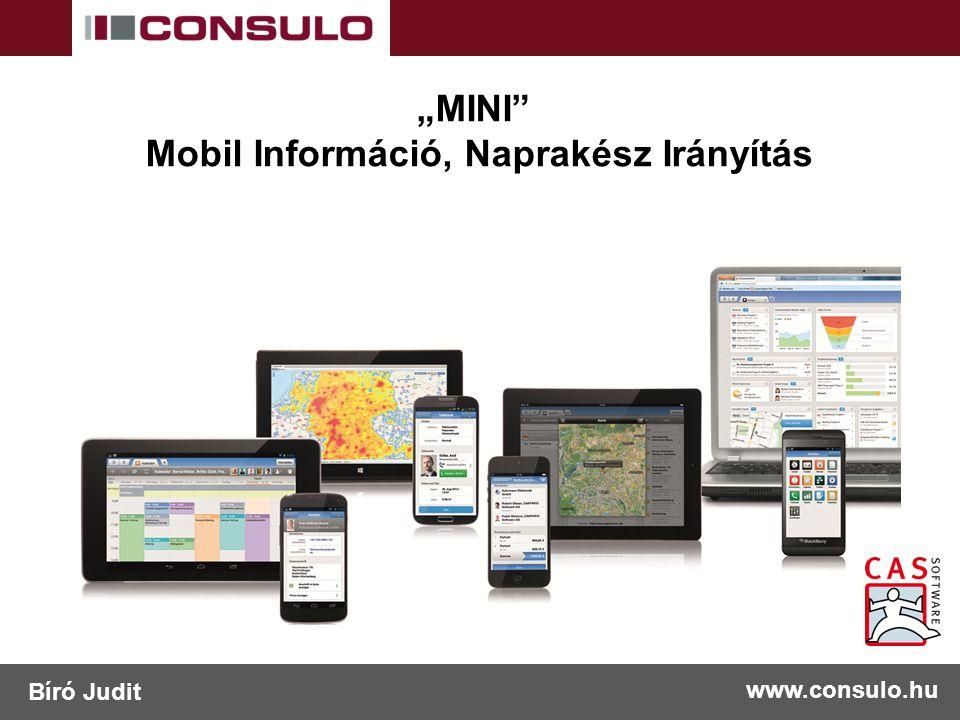 """""""MINI Mobil Információ, Naprakész Irányítás www.consulo.hu Bíró Judit"""
