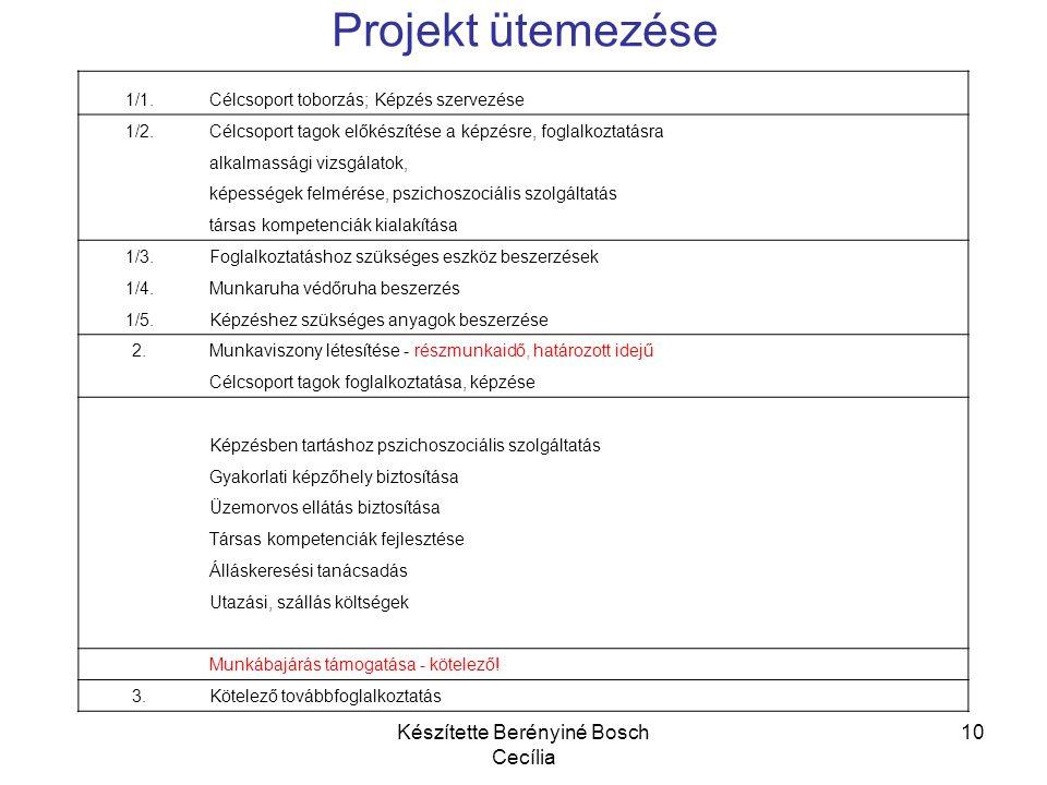 Készítette Berényiné Bosch Cecília 10 Projekt ütemezése 1/1.Célcsoport toborzás; Képzés szervezése 1/2.Célcsoport tagok előkészítése a képzésre, fogla