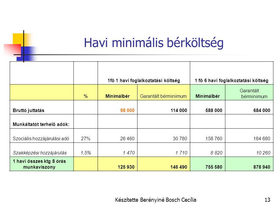Készítette Berényiné Bosch Cecília13 Havi minimális bérköltség 1fő 1 havi foglalkoztatási költség1 fő 6 havi foglalkoztatási költség %MinimálbérGarant
