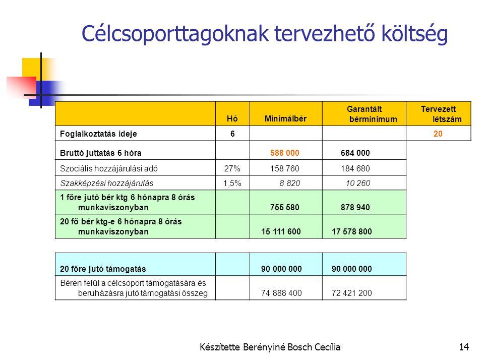 Készítette Berényiné Bosch Cecília14 Célcsoporttagoknak tervezhető költség HóMinimálbér Garantált bérminimum Tervezett létszám Foglalkoztatás ideje6 2