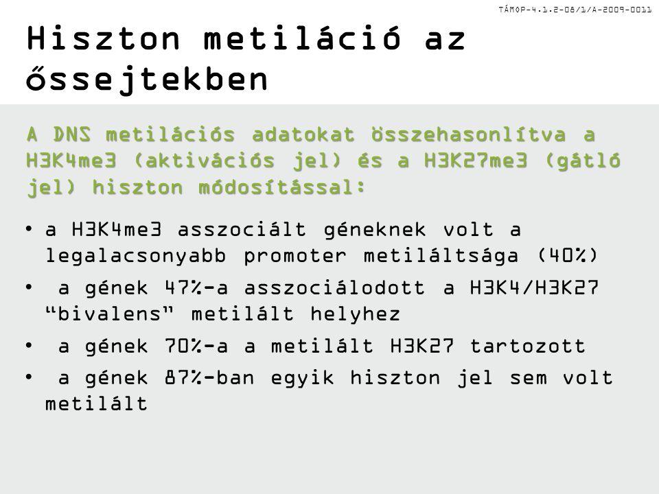 TÁMOP-4.1.2-08/1/A-2009-0011 Hiszton metiláció az őssejtekben A DNS metilációs adatokat összehasonlítva a H3K4me3 (aktivációs jel) és a H3K27me3 (gátló jel) hiszton módosítással: a H3K4me3 asszociált géneknek volt a legalacsonyabb promoter metiláltsága (40%) a gének 47%-a asszociálodott a H3K4/H3K27 bivalens metilált helyhez a gének 70%-a a metilált H3K27 tartozott a gének 87%-ban egyik hiszton jel sem volt metilált