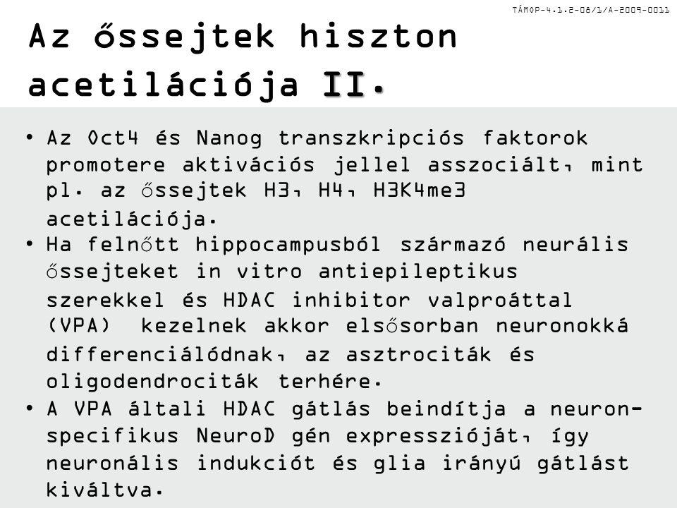 TÁMOP-4.1.2-08/1/A-2009-0011 II. Az őssejtek hiszton acetilációja II.