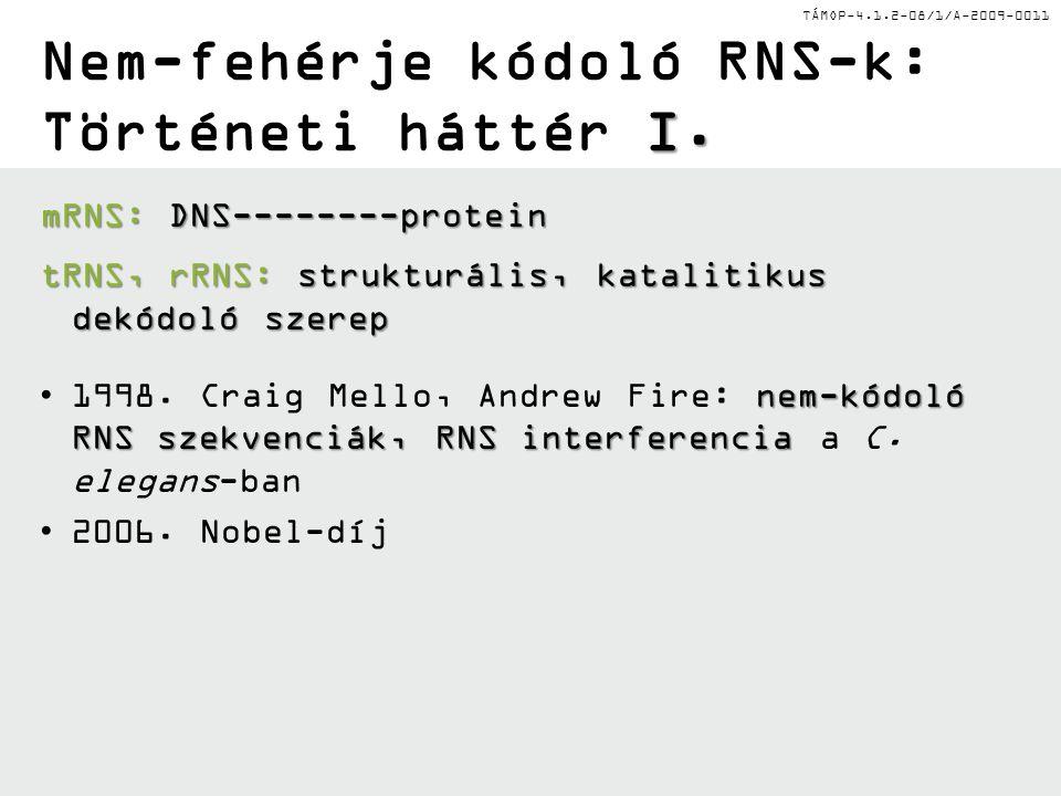 TÁMOP-4.1.2-08/1/A-2009-0011 I. Nem-fehérje kódoló RNS-k: Történeti háttér I.