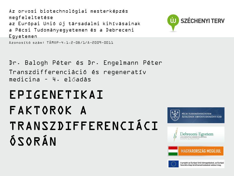 EPIGENETIKAI FAKTOROK A TRANSZDIFFERENCIÁCI ÓSORÁN Az orvosi biotechnológiai mesterképzés megfeleltetése az Európai Unió új társadalmi kihívásainak a Pécsi Tudományegyetemen és a Debreceni Egyetemen Azonosító szám: TÁMOP-4.1.2-08/1/A-2009-0011 Dr.
