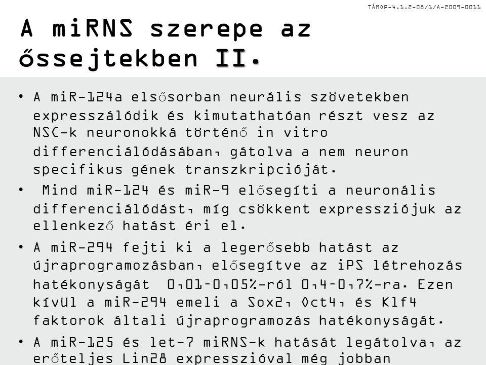 TÁMOP-4.1.2-08/1/A-2009-0011 II. A miRNS szerepe az őssejtekben II. A miR-124a elsősorban neurális szövetekben expresszálódik és kimutathatóan részt v