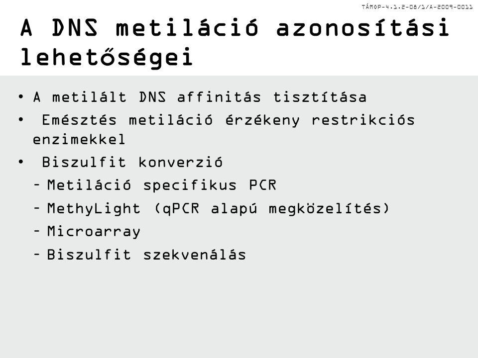 TÁMOP-4.1.2-08/1/A-2009-0011 A DNS metiláció azonosítási lehetőségei A metilált DNS affinitás tisztítása Emésztés metiláció érzékeny restrikciós enzimekkel Biszulfit konverzió –Metiláció specifikus PCR –MethyLight (qPCR alapú megközelítés) –Microarray –Biszulfit szekvenálás