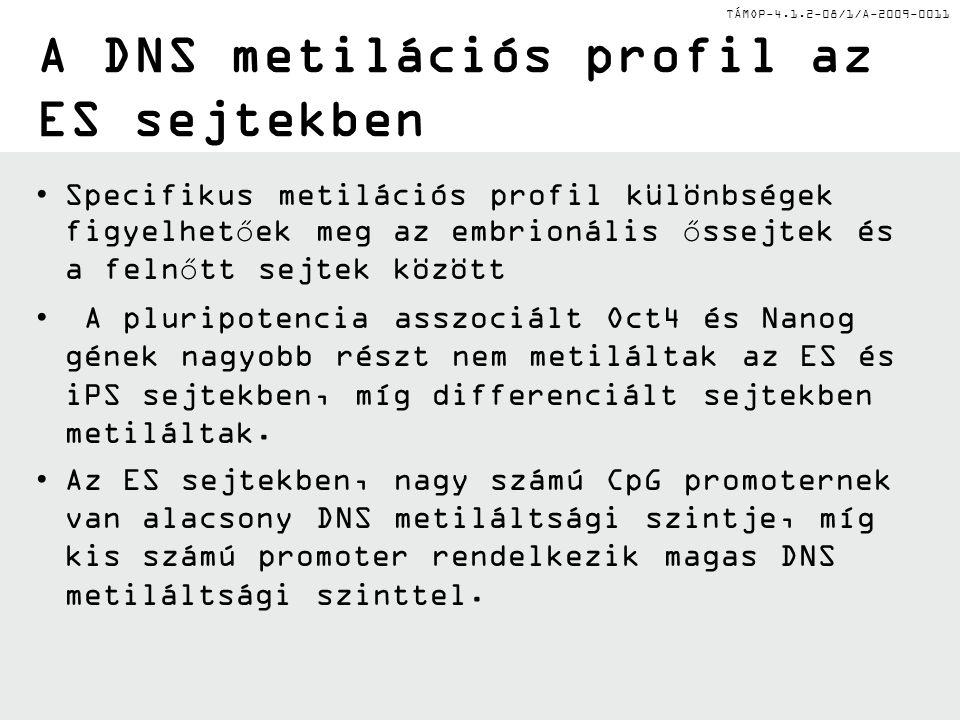 TÁMOP-4.1.2-08/1/A-2009-0011 A DNS metilációs profil az ES sejtekben Specifikus metilációs profil különbségek figyelhetőek meg az embrionális őssejtek és a felnőtt sejtek között A pluripotencia asszociált Oct4 és Nanog gének nagyobb részt nem metiláltak az ES és iPS sejtekben, míg differenciált sejtekben metiláltak.