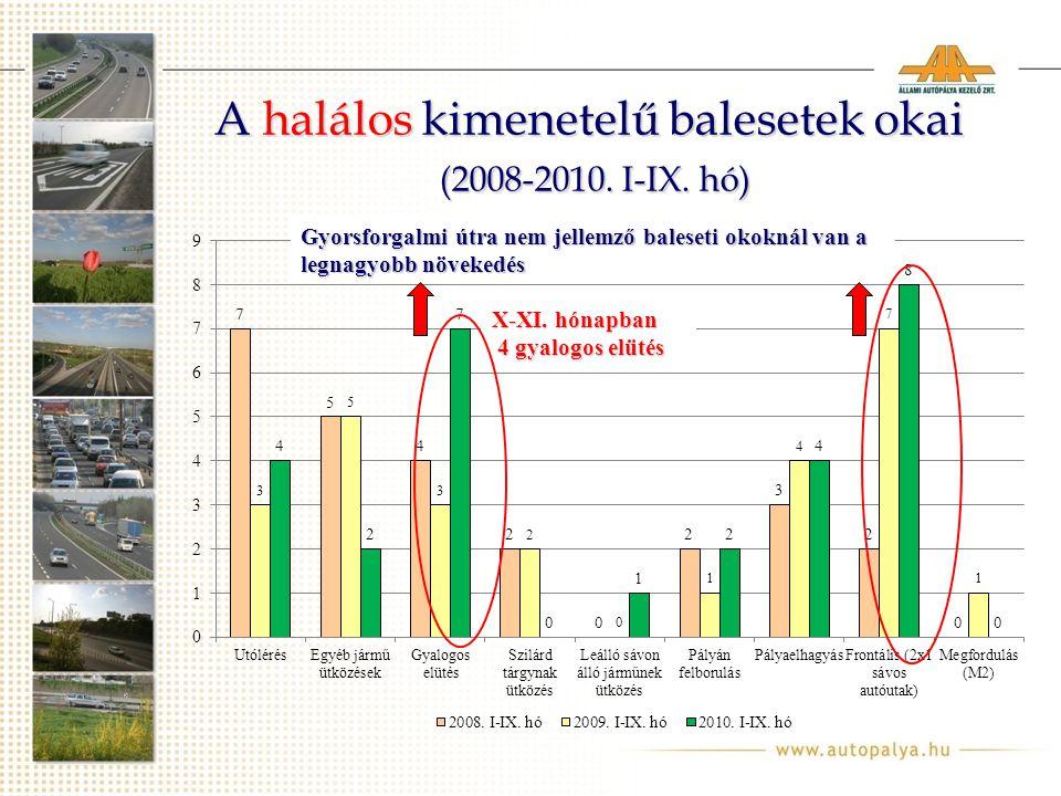 A halálos kimenetelű balesetek okai (2008-2010. I-IX.