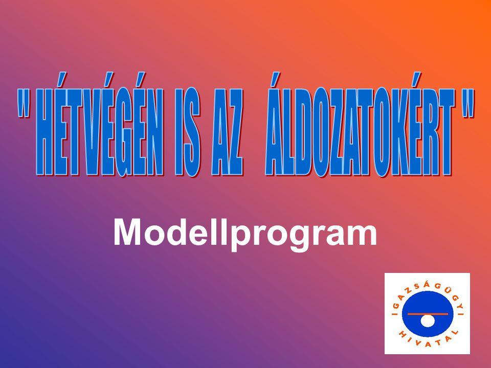 Modellprogram