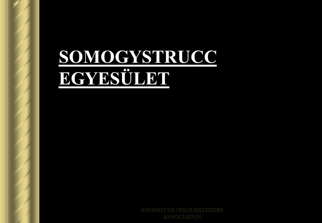 SOMOGY OSTRICH BREEDERS ASSOCIATION