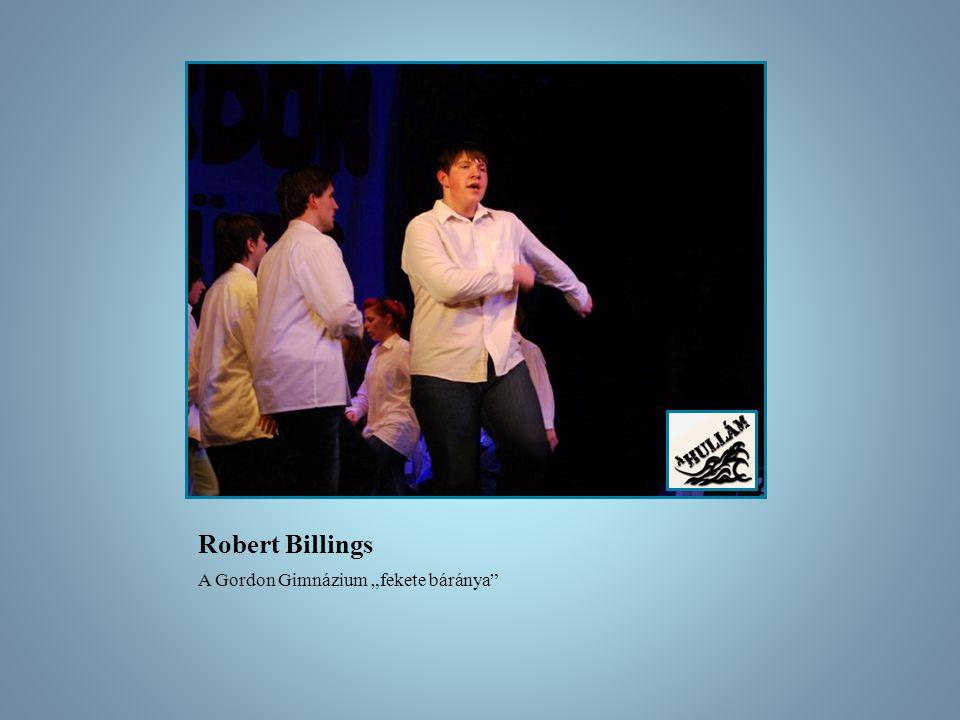 A hullám musical CD A hullám musical tizenkét dalának stúdiófelvétele A CD nincs kereskedelmi forgalomban