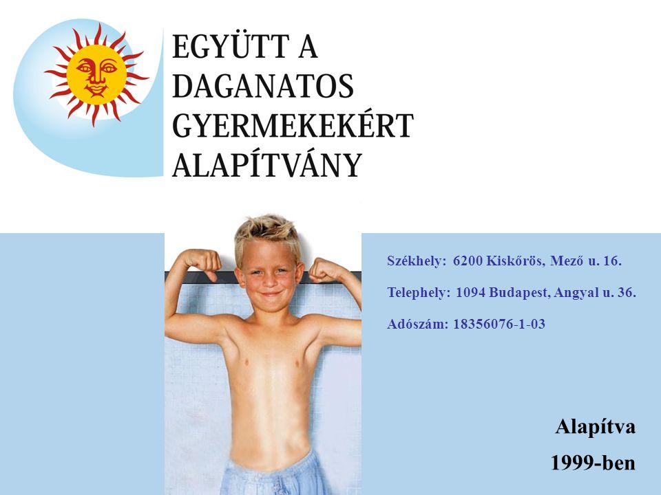 Alapítva 1999-ben Székhely:6200 Kiskőrös, Mező u. 16. Telephely: 1094 Budapest, Angyal u. 36. Adószám:18356076-1-03
