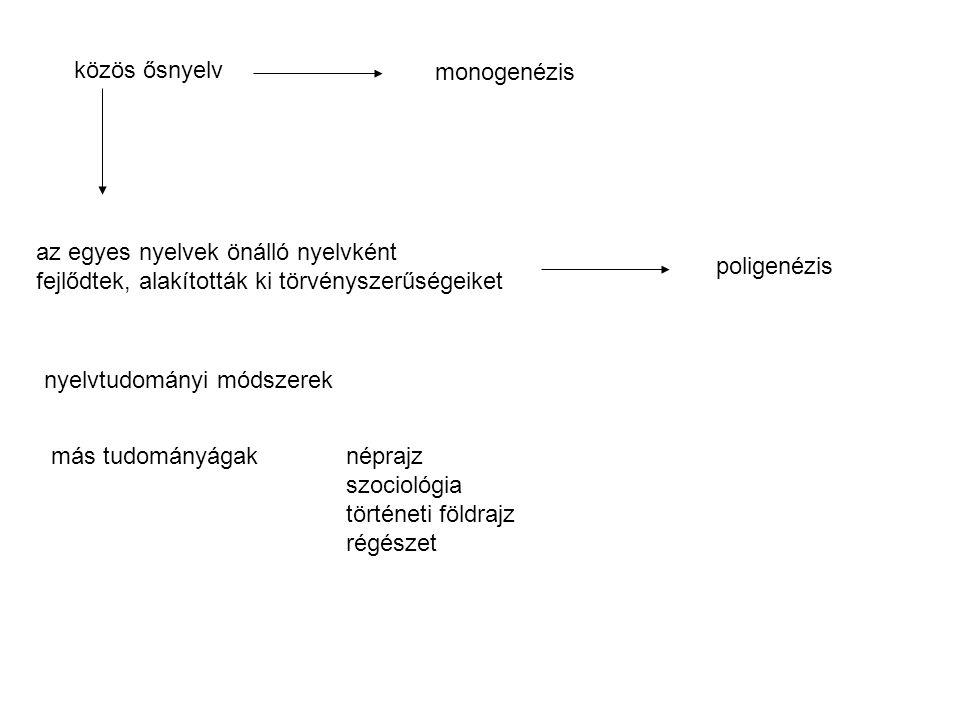 közös ősnyelv az egyes nyelvek önálló nyelvként fejlődtek, alakították ki törvényszerűségeiket nyelvtudományi módszerek más tudományágak néprajz szociológia történeti földrajz régészet monogenézis poligenézis