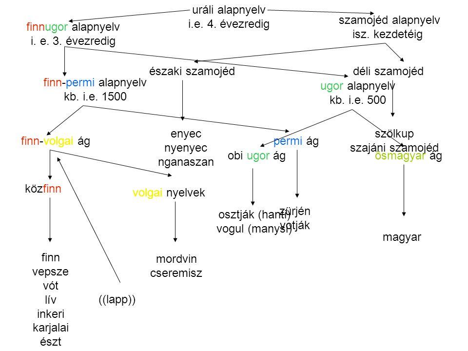 uráli alapnyelv i.e.4. évezredig finnugor alapnyelv i.