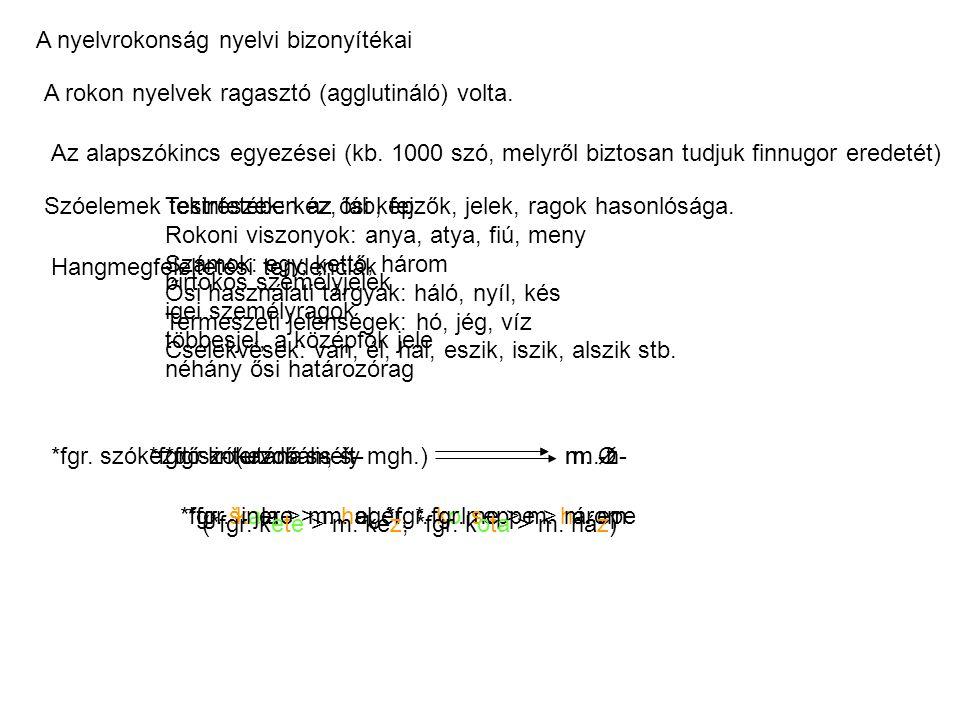 A nyelvrokonság nyelvi bizonyítékai A rokon nyelvek ragasztó (agglutináló) volta.
